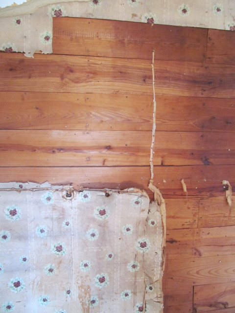 Beautiful shiplap under drywall and wallpaper