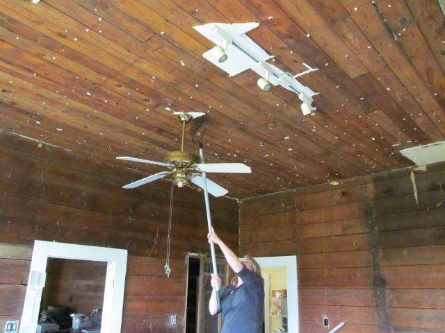 removing acoustical ceiling tiles using a rake