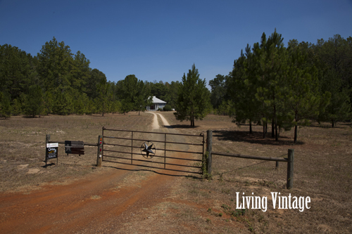 Living Vintage - location of our dogtrot from the road