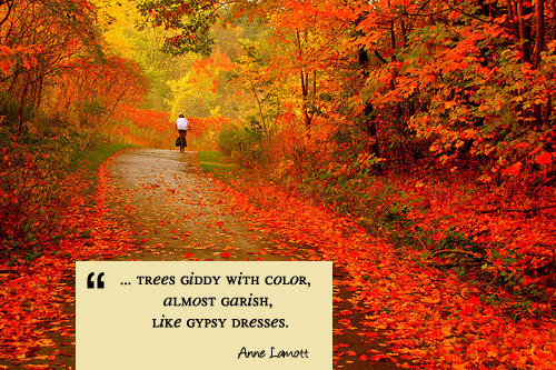 Fall Quotes: A Quote For Today :: Autumn