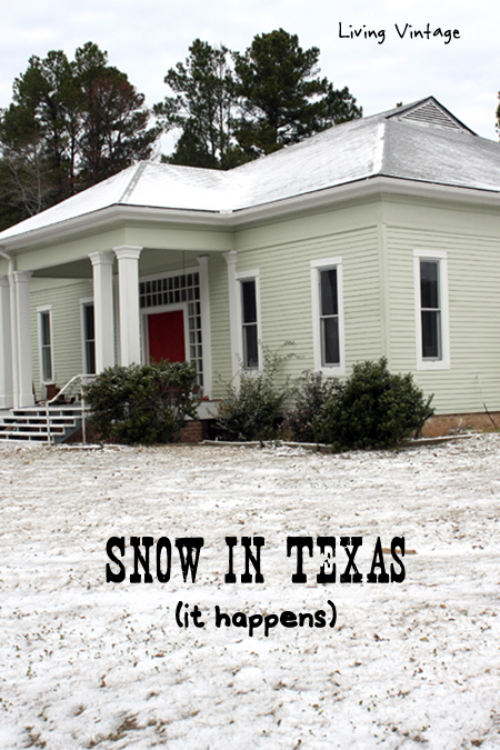 Texas Snow Meme