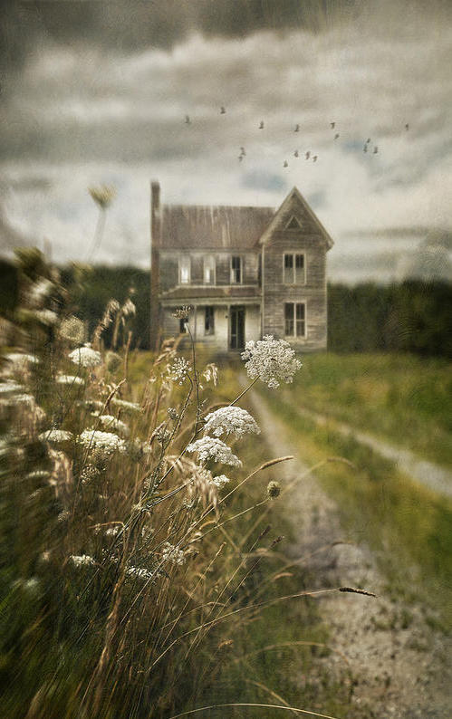 a beautiful image of an abandoned farmhouse - Friday Favorites - Living Vintage