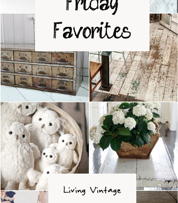 Friday Favorites #18