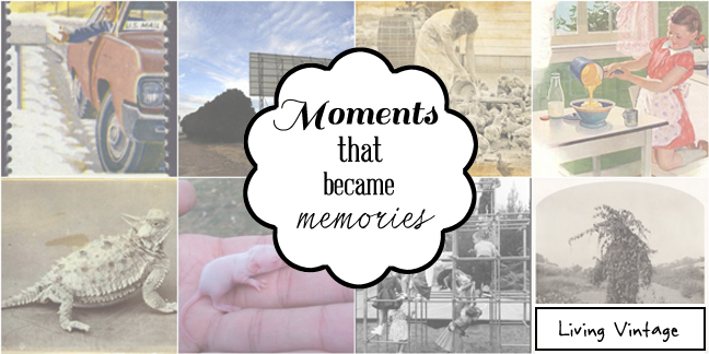 Moments that became memories - Living Vintage