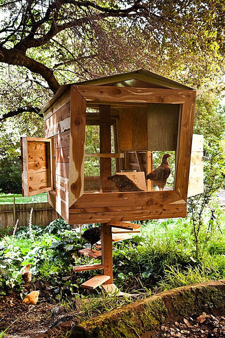 a chicken coop with a view - one of 8 picks for this week's Friday Favorites - Living Vintage