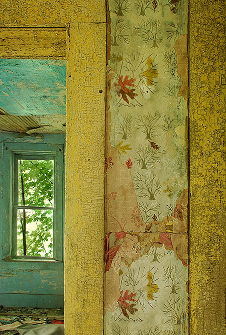 beautiful old wallpaper inside an abandoned house - Friday Favorites - Living Vintage