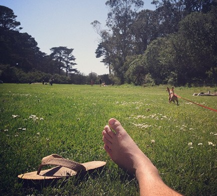 lazy day at the park (or so it seems) - Friday Favorites - Living Vintage