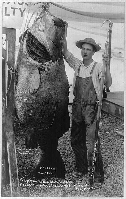 12 fascinating and amusing vintage fishing photos - Living Vintage