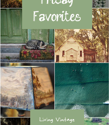 Friday Favorites #24