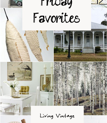 Friday Favorites #23