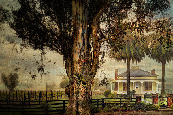 the artist captured the low country beautifully - one of 8 picks for this week's Friday Favorites - Living Vintage