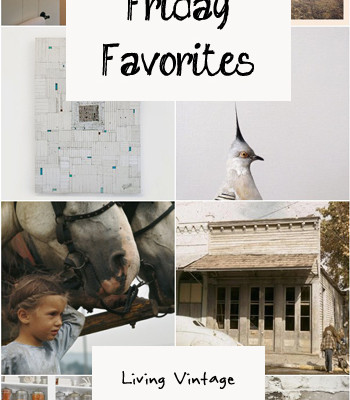 Friday Favorites #36