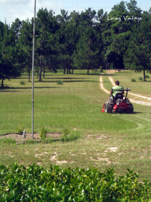 mowing our acreage in East Texas