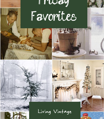Friday Favorites #41 (A little early)