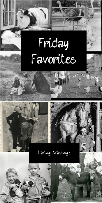 Friday Favorites in black and white - Living Vintage