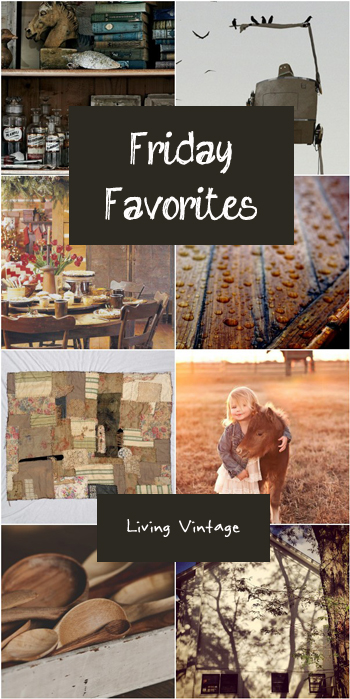 Friday Favorites - Living Vintage - BROWN-2