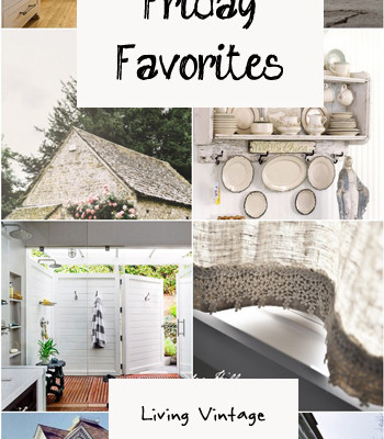 Friday Favorites #43