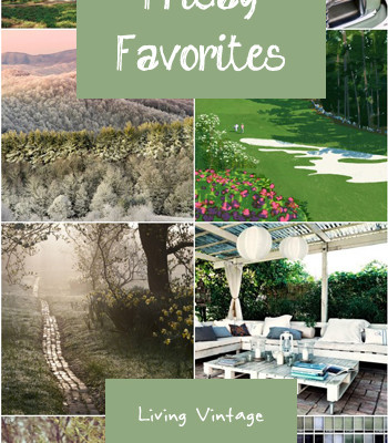 Friday Favorites #38