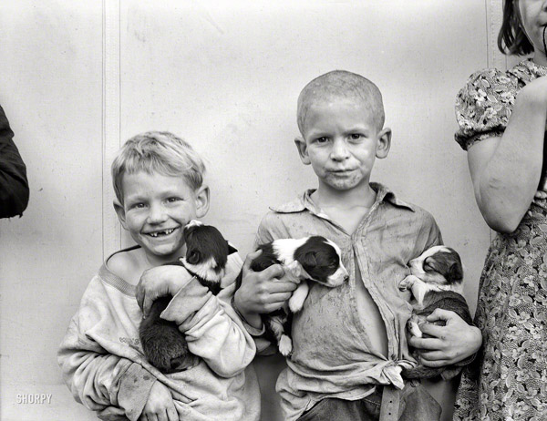 cotton picker's children with their puppies - one of 8 picks for this week's Friday Favorites