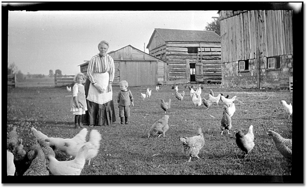 feeding her chickens - one of 8 picks for this week's Friday Favorites