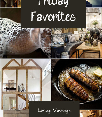 Friday Favorites #49