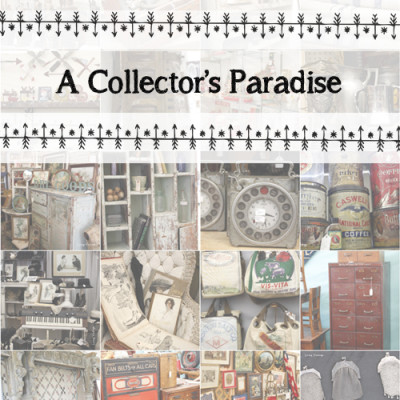 A Collector's Paradise