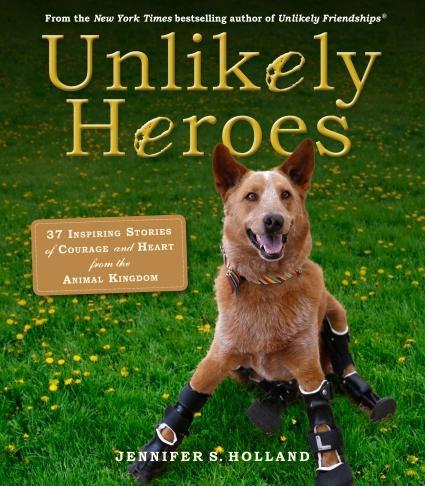 Unlikely Heroes book