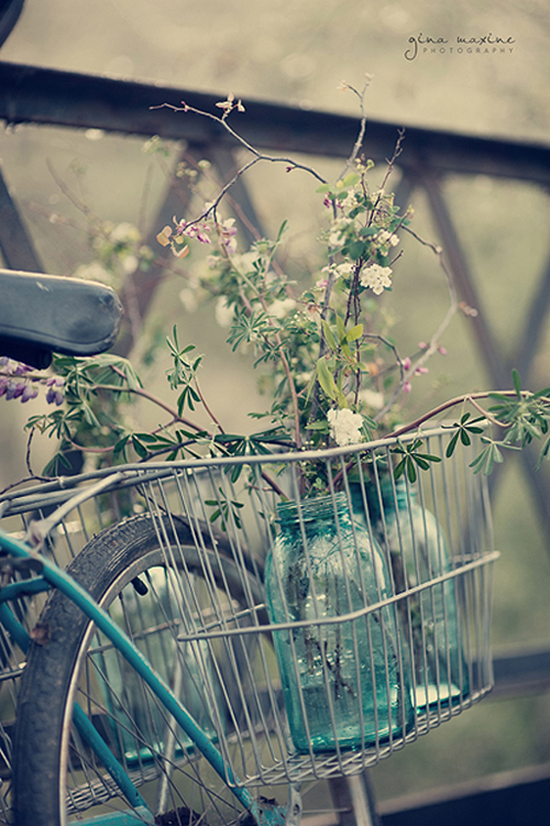 a beautiful still life of a bike, spring flowers and mason jars - one of 8 picks for this week's Friday Favorites