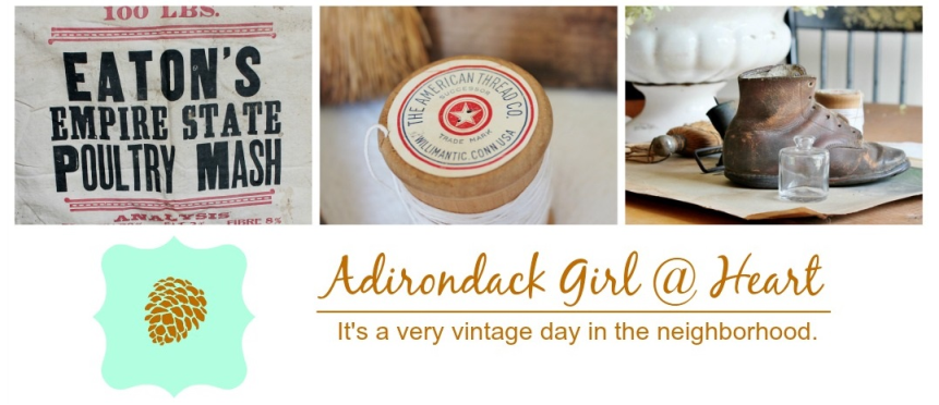 Adirondack Girl at Heart's blog header
