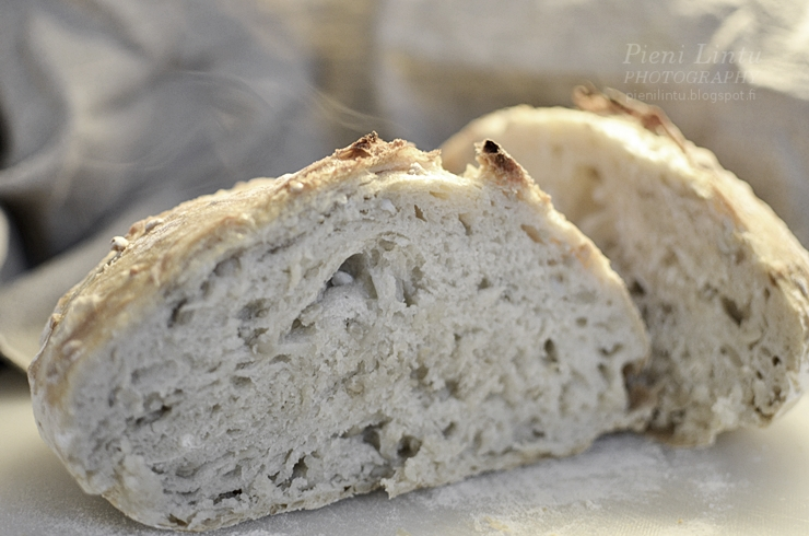 If this photo doesn't make you crave fresh-baked bread, I don't know what will. -- one of 8 picks for this week's Friday Favorites