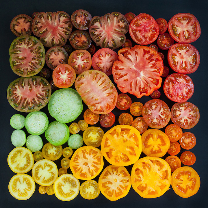 a vibrant, artful arrangement of tomatoes - one of 8 picks for this week's Friday Favorites