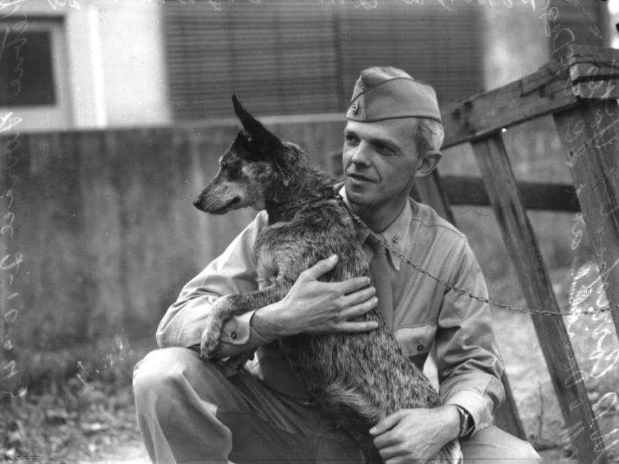 a U.S. soldier with his cattle dog during WW2