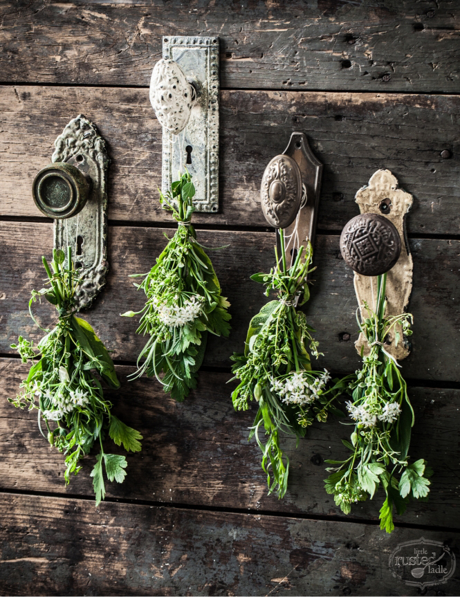drying herbs: another way to repurpose old doorknobs | one of 8 picks for this week's Friday Favorites
