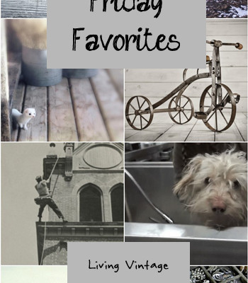 Friday Favorites #115