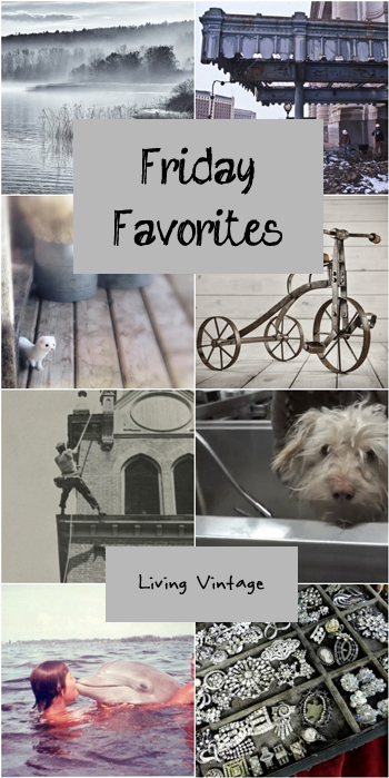 Friday Favorites #115 @ Living Vintage
