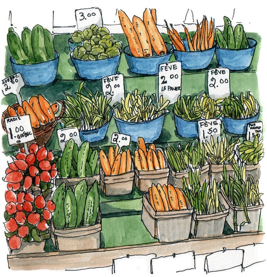 a charming illustration of fresh vegetables - one of 8 picks for this week's Friday Favorites