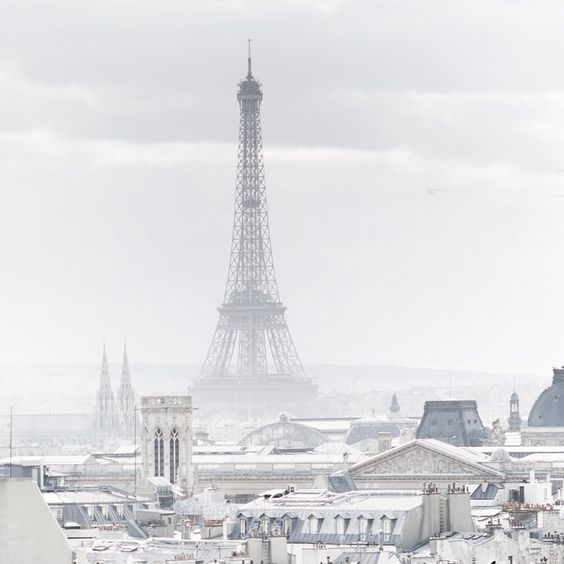 a beautiful image of Paris during winter - one of 8 picks for this week's Friday Favorites