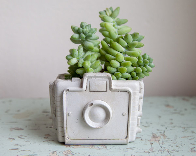 an adorable concrete planter - one of 8 picks for this week's Friday Favorites