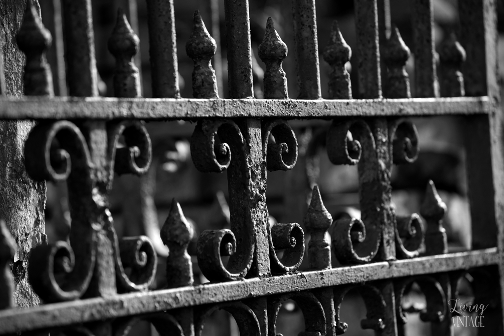 the beautiful iron fences within the cemeteries in New Orleans
