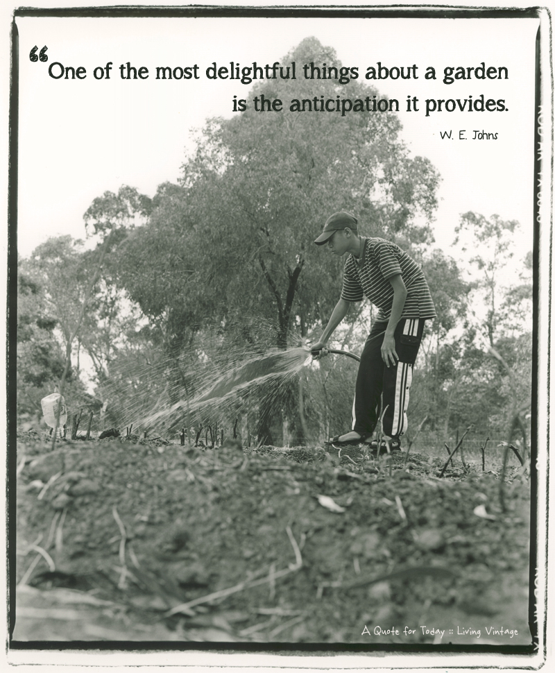 The sweet anticipation of a garden - it's 1 of 52 quotes I'll be sharing this year