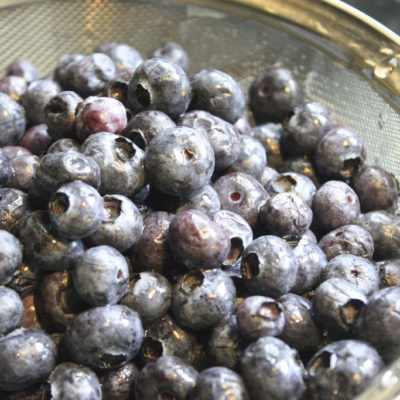 Blueberries, Cleaned and Sugared (#2)