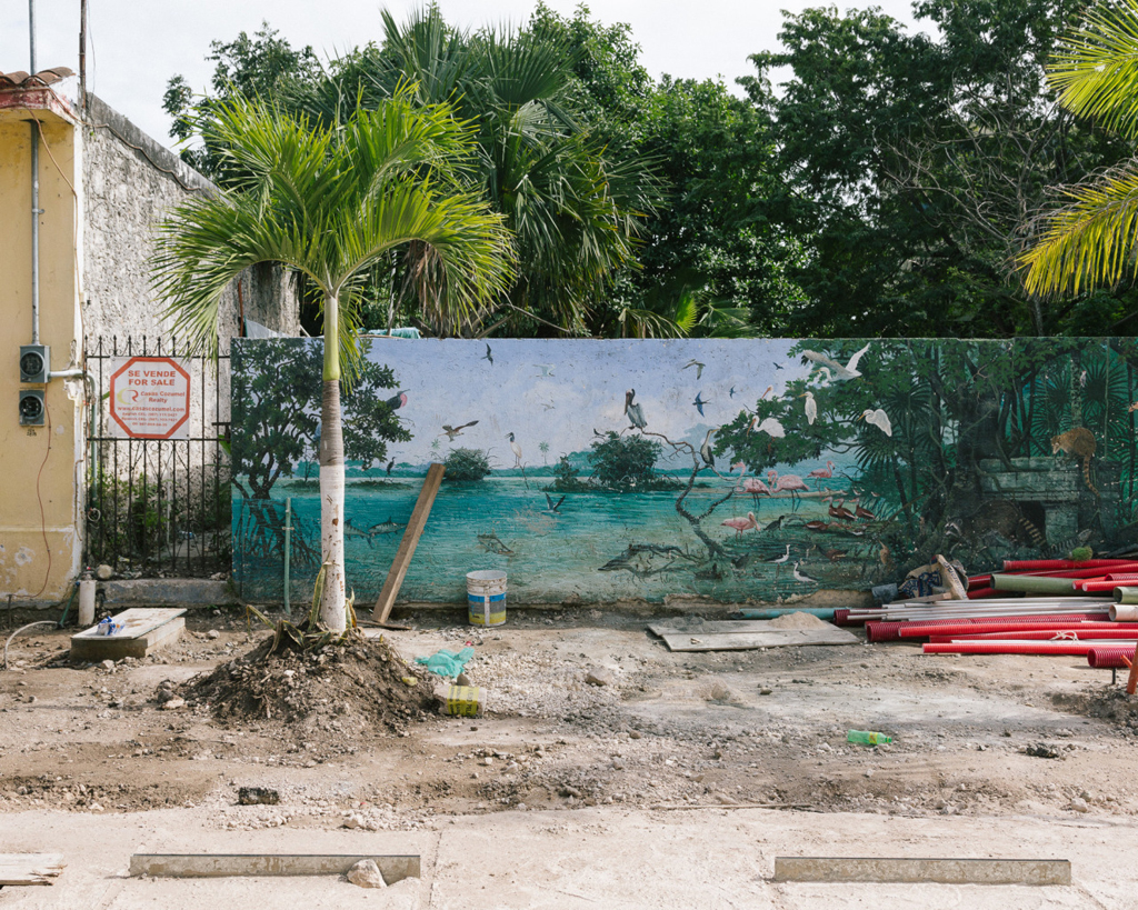 a pretty mural in Mexico - 1 of 8 picks for this week's Friday Favorites