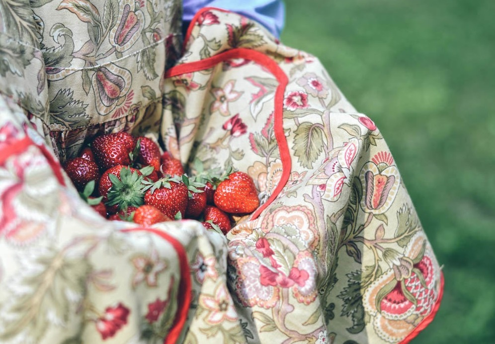 a lovely image of an apron full of fresh strawberries - 1 of 8 picks for this week's Friday Favorites