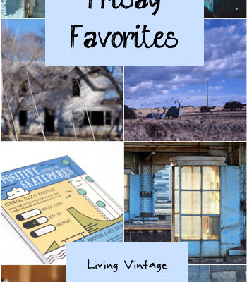 Friday Favorites #106
