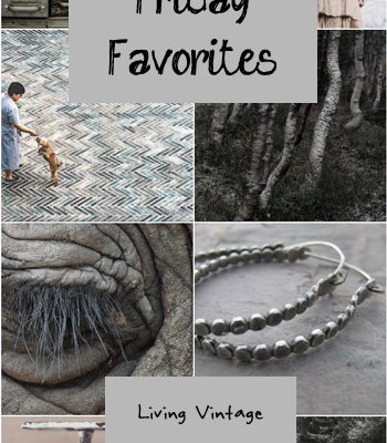 Friday Favorites #108