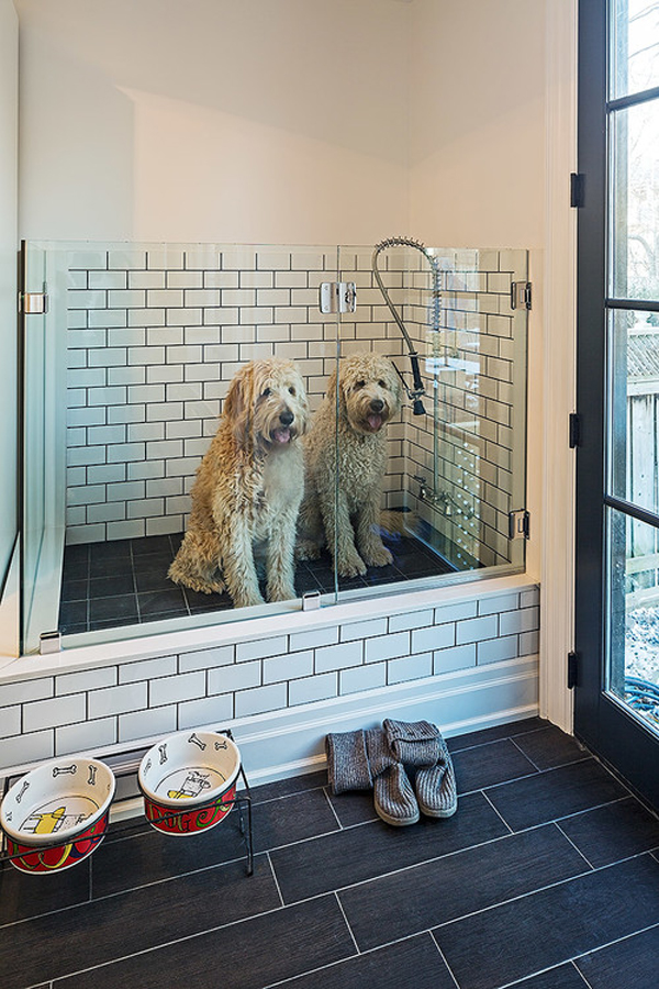 a pretty darn wonderful dog bath - 1 of 8 picks for this week's Friday Favorites