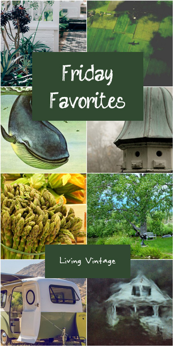 Friday Favorites #113 @ Living Vintage. I look forward to these each week!
