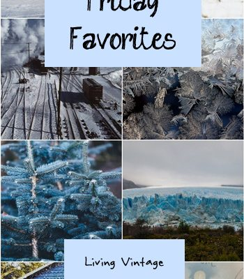 Friday Favorites #128