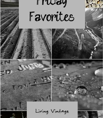 Friday Favorites #123