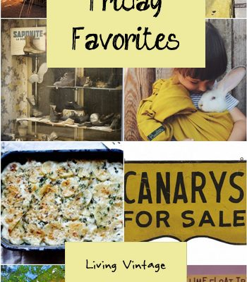 Friday Favorites #116